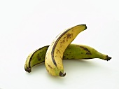 Two Plantains: One Ripe, One Unripe