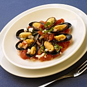 Mussels with Chunky Tomato Sauce on a White Plate
