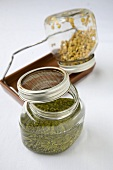 Sprouting Beans in Sprouting Jars