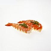 Sushi Shrimp on White Background