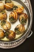 Snails in Garlic Herb Butter