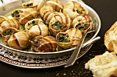 Escargot with Garlic Herb Butter; Bread