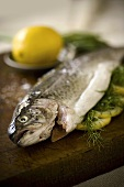 Dressed Trout with Lemon on Cutting Board