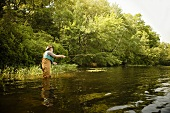 Man Casting Fly Rod in River