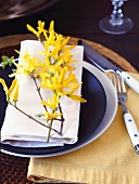 Place Setting with Forsythia Branch
