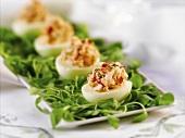Lobster Stuffed Eggs on Platter