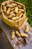 Bag of Boiled Peanuts; Outdoors