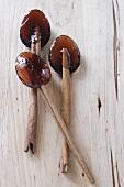 Brown Sugar Spoons with Cinnamon Sticks