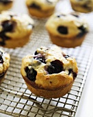 Homemade Blueberry Muffins on Cooling Rack