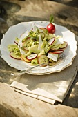 Insalata romana (Celery and fennel salad with Ricotta Salata)