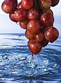 Fresh Bunch of Red Grapes Over Water