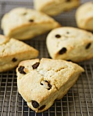 Cornmeal Raisin Scones on a Cooling Rack