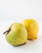 Canistel-Früchte (Pouteria Campechiana)