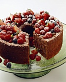 Chocolate Bundt Cake with Fruit and Powdered Sugar