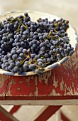 Bowl of Wine Grapes on Old Picnic Table