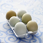 Six Free Range Hen Eggs in Plastic Container