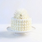White Chocolate Cake with White Chocolate Buttons and White Flower on Top