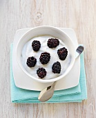 Bowl of Greek Yogurt with Fresh Blackberries