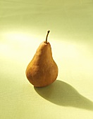 A Single Bosc Pear on a Green Background