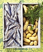 Fresh Sardines on Ice; Fingerling Potatoes with Dill; In Box