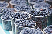 Organic Blueberries at a Farmer's Market