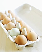 Twelve eggs in an egg box