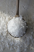 Cyprus Sea Salt; Spoonful
