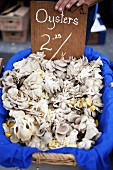 Fresh Oyster Mushrooms at Farmer's Market; Price Sign