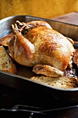 Whole Roasted Chicken in Baking Pan with Bread
