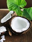 Coconut Broken Open; Dehydrated Coconut in a Bowl