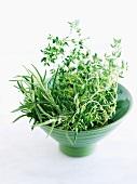 Fresh Organic Rosemary and Thyme
