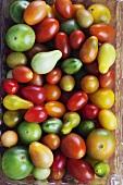 Variety of Fresh Heirloom Tomatoes