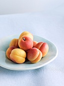 Fresh Apricots on a Dish