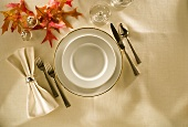 Autumn Place Setting with Fall Leaves; From Above