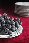 Fresh Concord Grapes on Antique China Plates