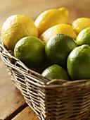 Basket of Limes and Lemons