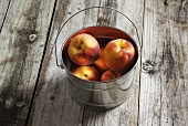 Ripe Peaches in a Tin Bucket on Rustic Wooden Table