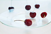 Red Cherries on a Glass Plate