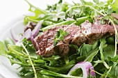 Grilled Steak and Red Onion Salad
