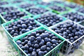 Plastic Containers of Fresh Picked Blueberries at Market
