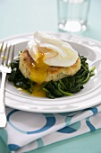Salmon Fishcake on Wilted Spinach Topped with Poached Egg