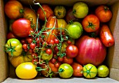 Various Heirloom tomatoes in a box, seen from above