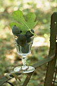 Fresh Figs with Leaf in a Glass on an Outdoor Chair