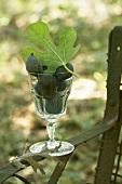 Frische Feigen mit Blatt im Glas auf Gartenstuhl