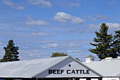 Beef Cattle Sign on Barn