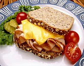 Turkey Sandwich with Melted Cheese on Multi-Grain Bread