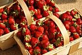 Wooden Baskets of Fresh Organic Strawberries