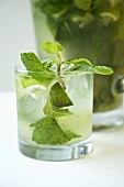Mojito with Fresh Mint Sprig