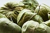 Fresh Tomatillos; In Husks
