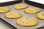 Chocolate Chip Whoopie Pie Shells on Baking Sheet